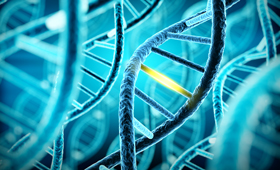 What does a BRCA gene mutation mean for men?
