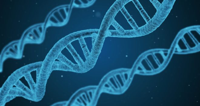 Komen-Funded Research Identifies Previously Unknown Gene Mutations Associated with Poor Outcomes in ER+ Breast Cancer