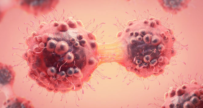Busting myths: cancer is not just one disease